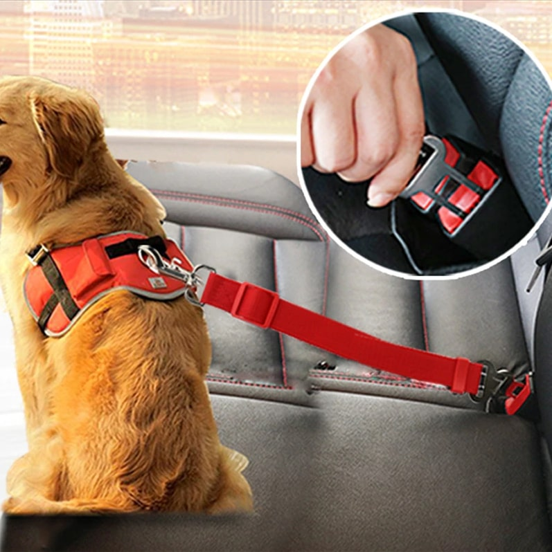 Pet Seatbelt